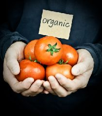 organic foods for weight loss